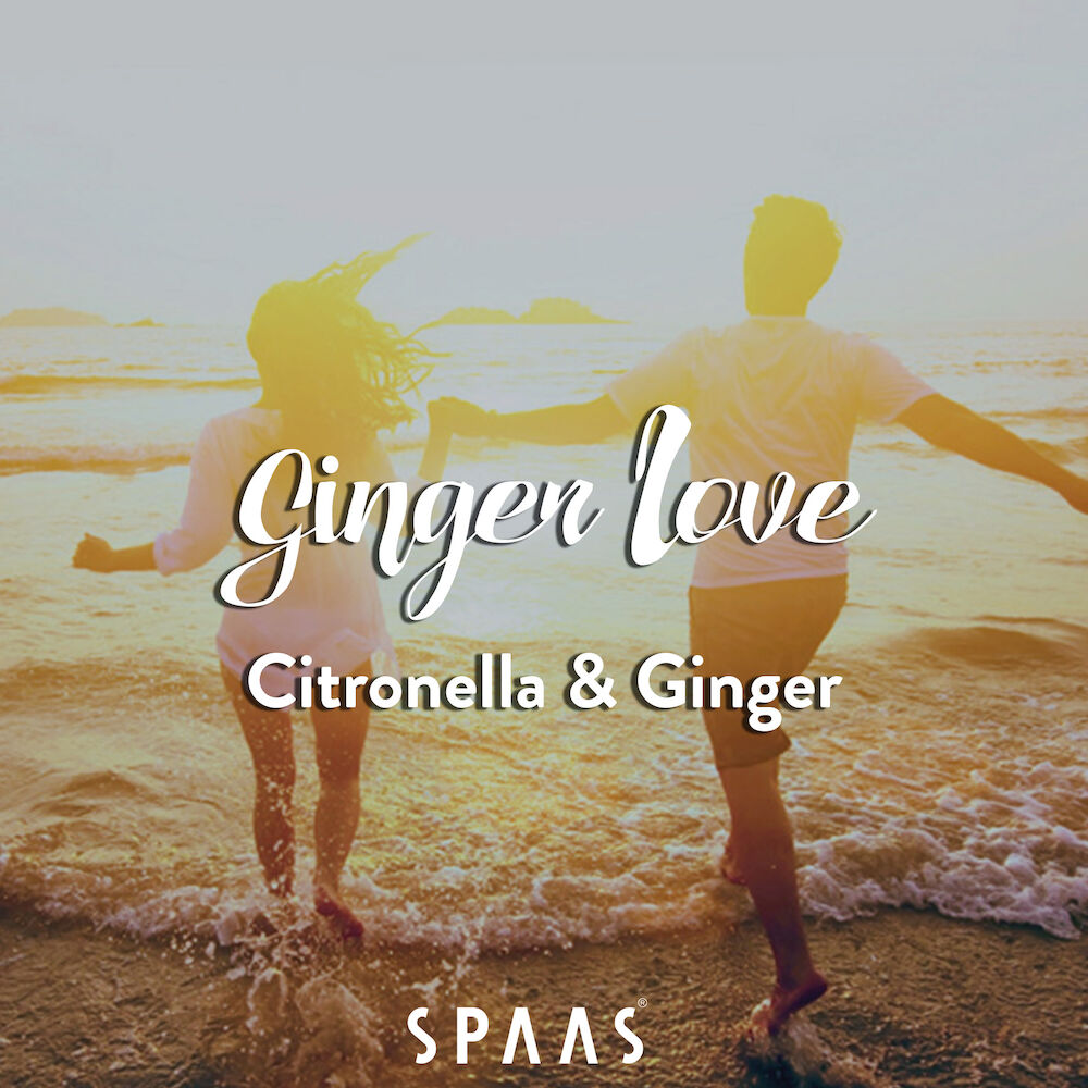 Scented-Candles-Spaas-Ginger-Love-scent-citronella-ginger